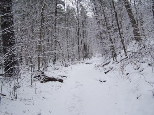 Snowy Steep Part