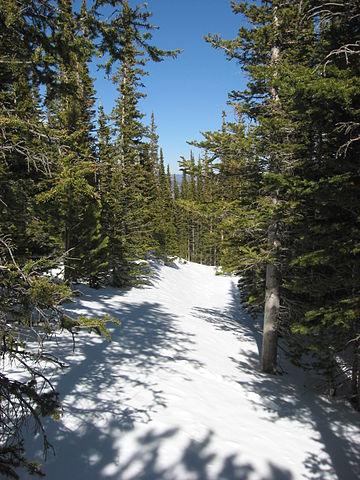 Flattop Mountain Trail in Winter