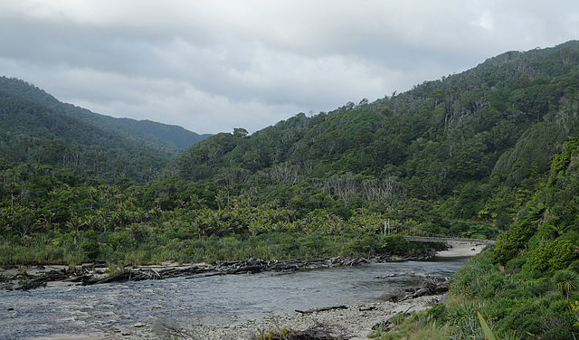 Kohaihai River in Kahurangi National Park