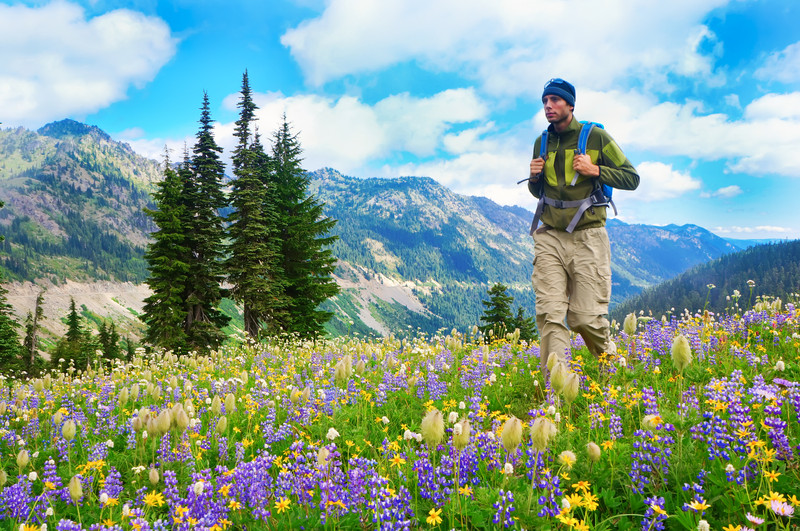 Hiker Walking In Alpine Scene
