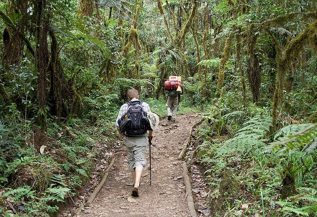 Daypack On The Trail