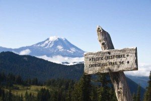 Pacific Crest Trail Sign With Mount Adams In the Background