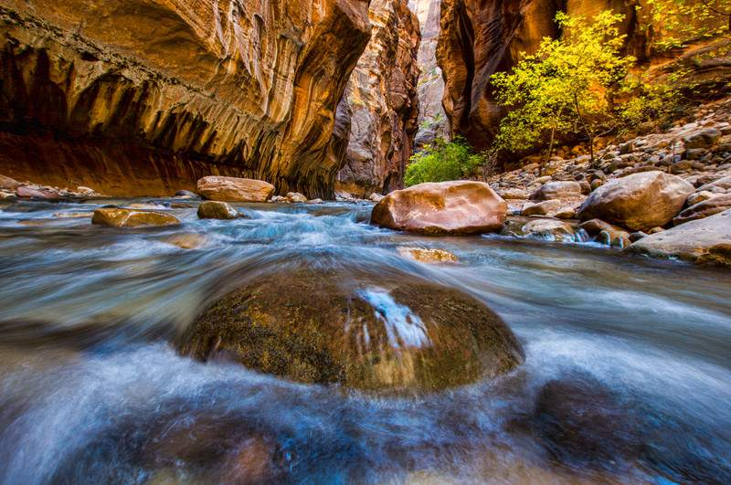 Virgin Narrows River in Zion National Park