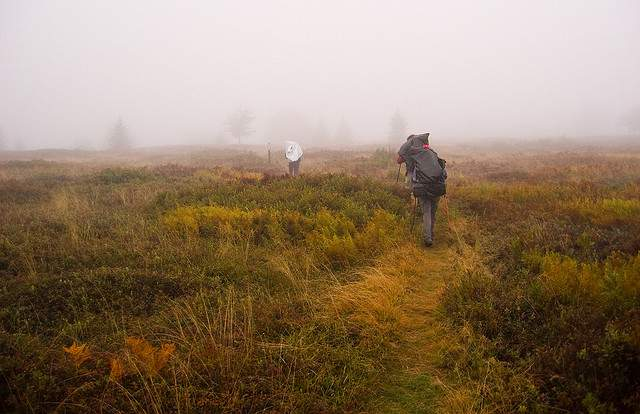 Hiking Through Fog