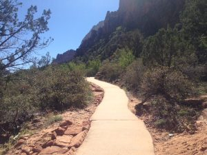 Path in Zion