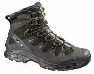 Salomon Quest 4D 2 GTX Hiking Boots For Men CT