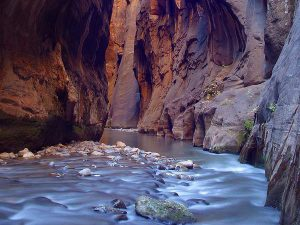 Zion Narrows 1