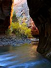Zion Narrows 2