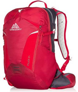 Gregory Miwok 24 Backpack CT