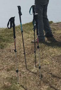 Some Trekking Poles in the Ground