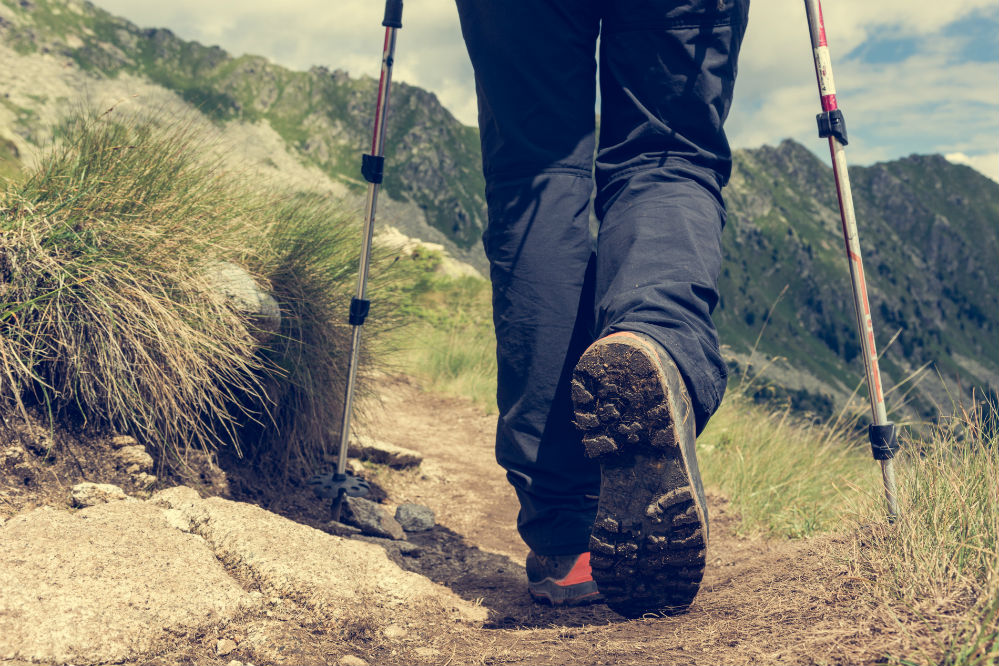 The Trailbuddy Trekking Poles