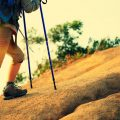 How To Adjust Trekking Pole Height