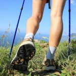Trekking Pole vs Walking Stick, Which Is Better?