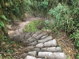 Steps On The Inca Trail