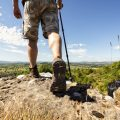 How-To-Use-A-Walking-Stick-For-Hiking